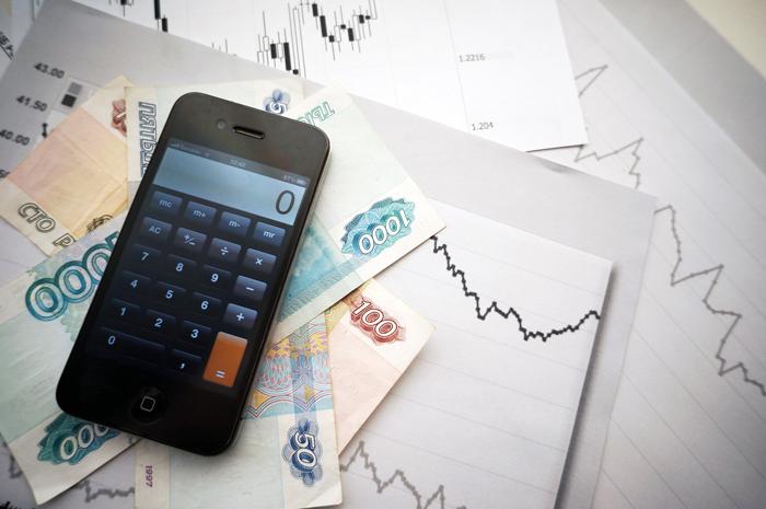Ответственность за ложные сведения о доходе