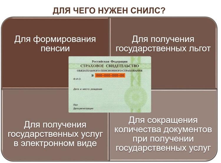 Документ СНИЛС