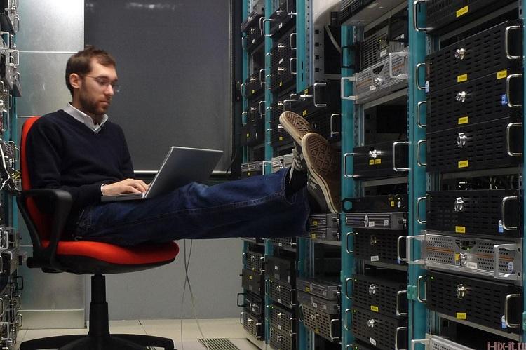 Работа в сфере IT